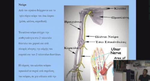 Άρθρωση του αγκώνα
