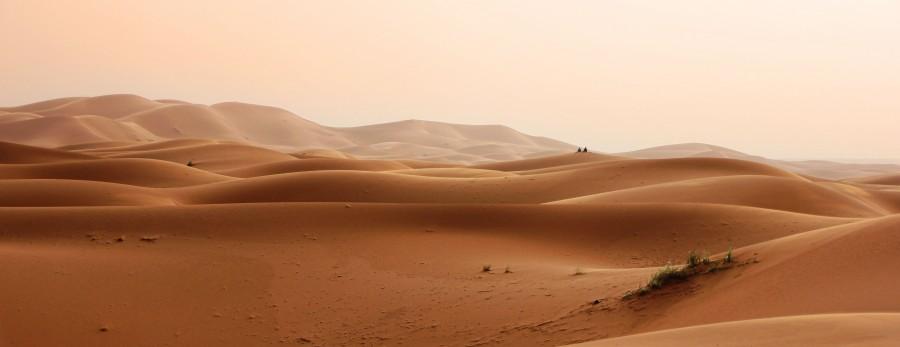 Να θυμάσαι την έρημο